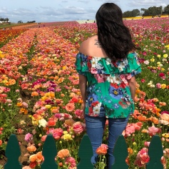 The Flower Fields- Carlsbad, CA